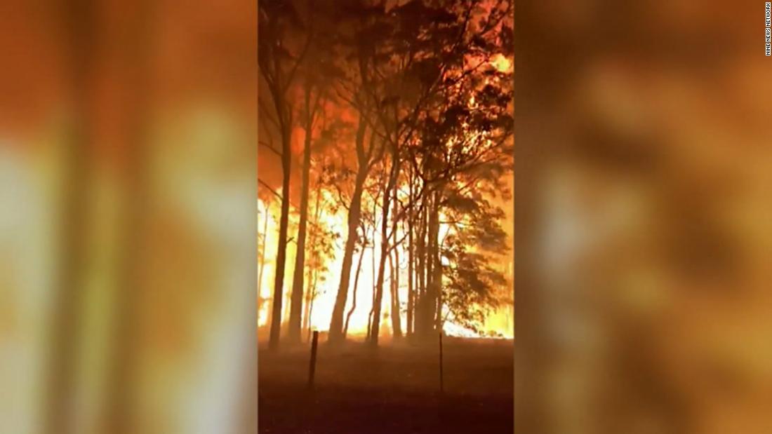 Australia fires: Video captures Sydney crown fire as New South Wales battles blazes